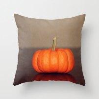 http://www.etsy.com/nz/listing/165361166/pillow-cover-pumpkin-home-decor-throw